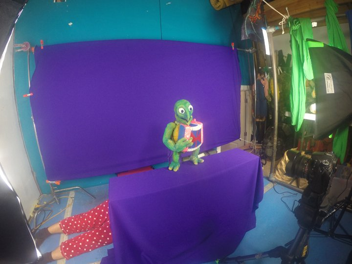 Green-turtle-puppet-playing-the-accordion-on-purple-screen
